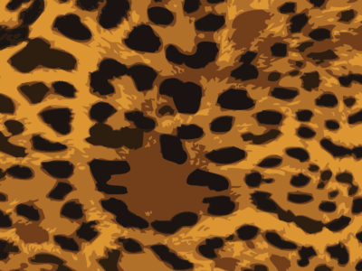 Leopard Skin Powerpoint Backgrounds