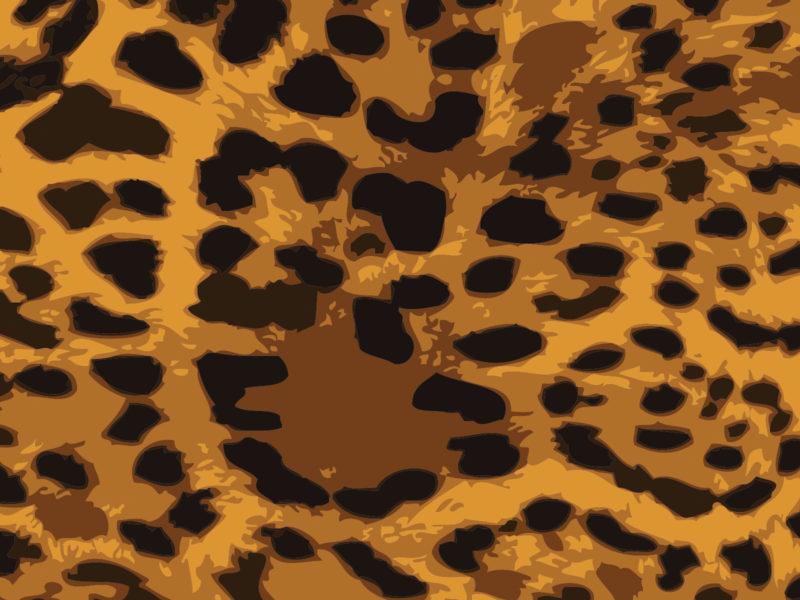 Leopard Skin Powerpoint Backgrounds