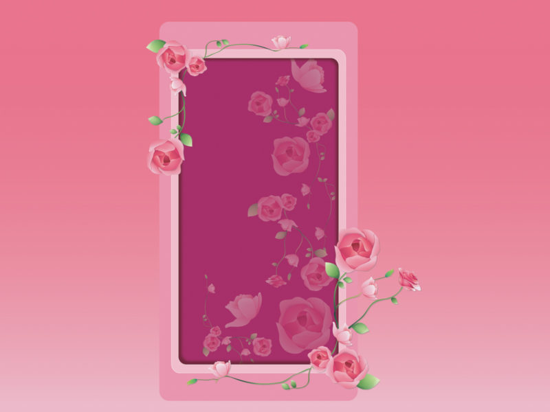 Pink Roses Frame Backgrounds