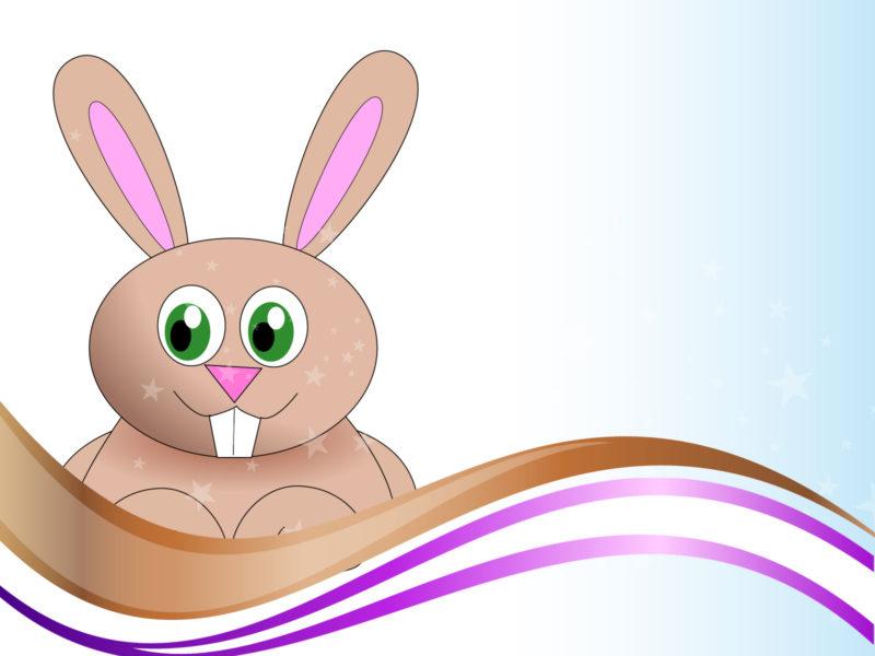 Rabbit Powerpoint Backgrounds
