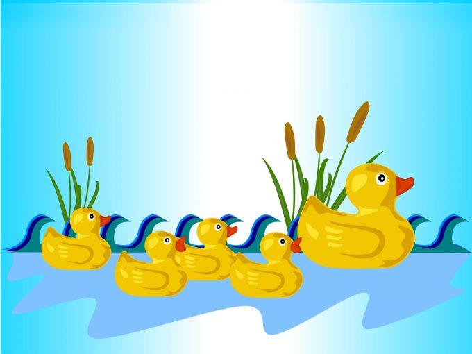 Rubber Ducks PPT Backgrounds