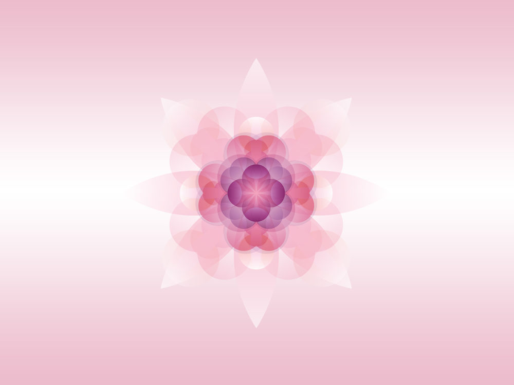 Pink Flowers PPT Backgrounds