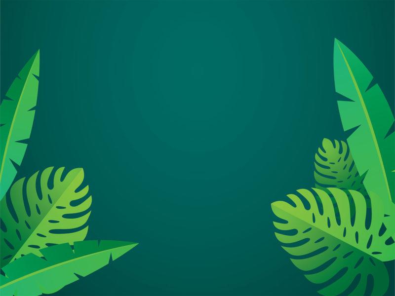 Eco Magazine Powerpoint Backgrounds