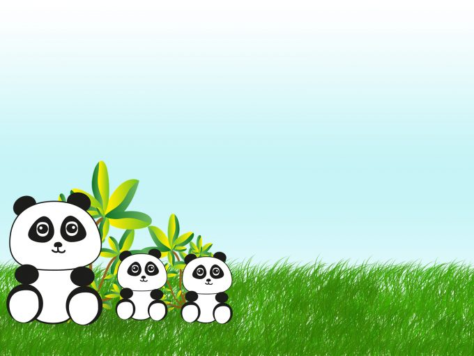 Panda Bear in China PPT Backgrounds