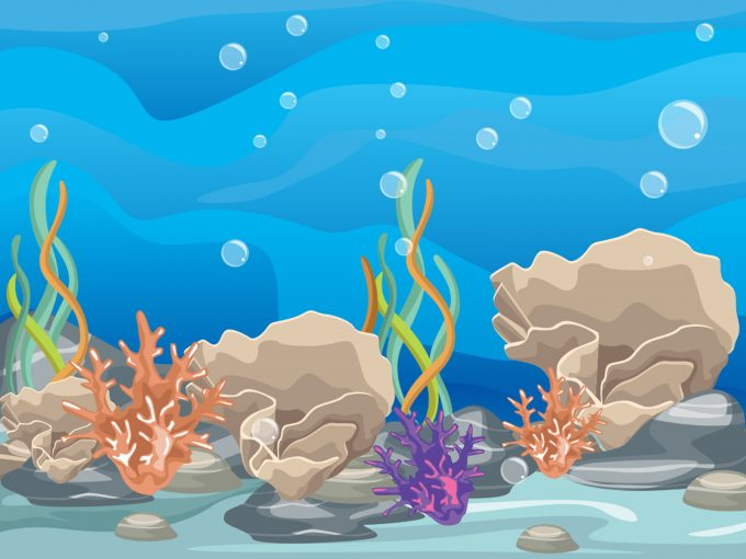 Coral Reef PPT Backgrounds
