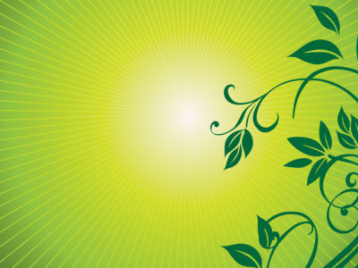 Fresh Nature Ornaments PPT Backgrounds