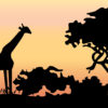Giraffe at Jungle Backgrounds