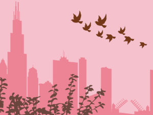 Journey of Migratory Birds PPT Bacground