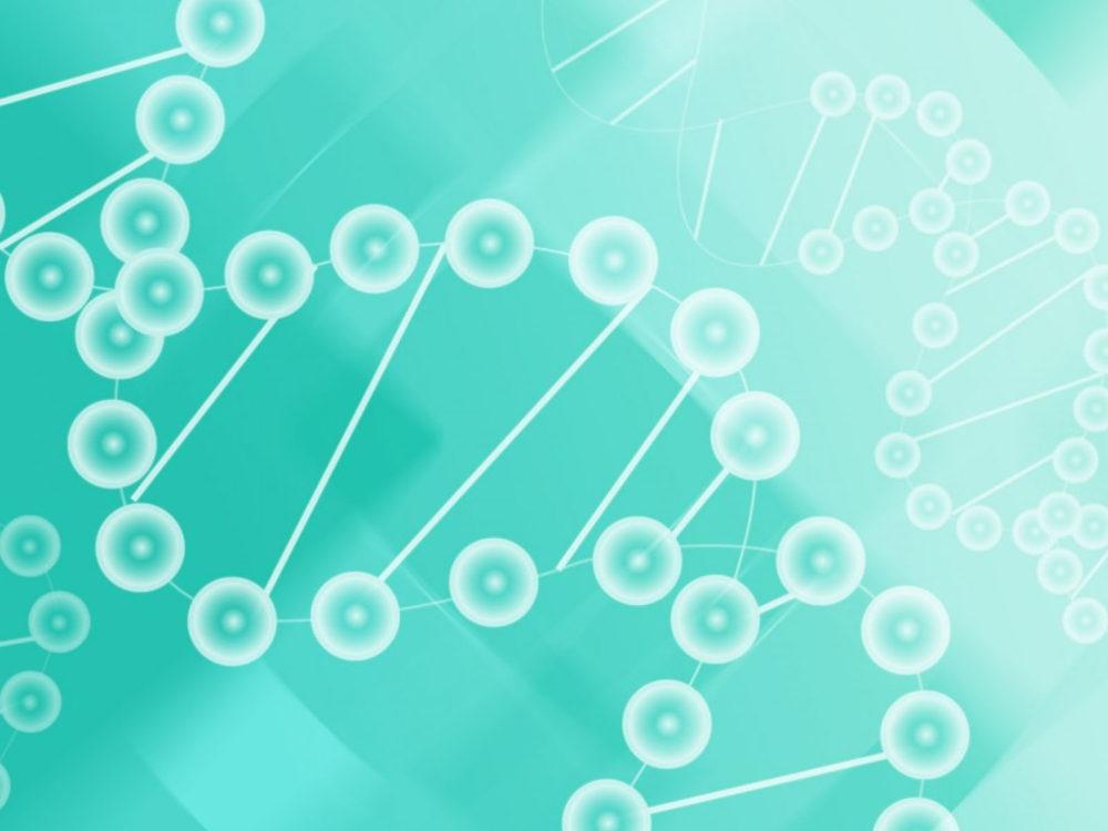 DNA Molecules of Biyology PPT Templates
