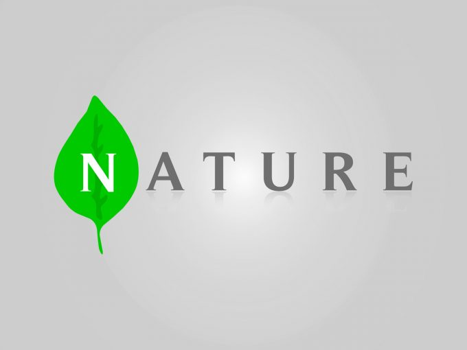 Nature PPT Backgrounds