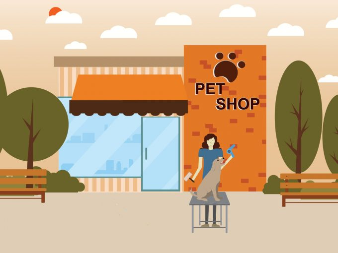 Pet Shop PPT Backgrounds