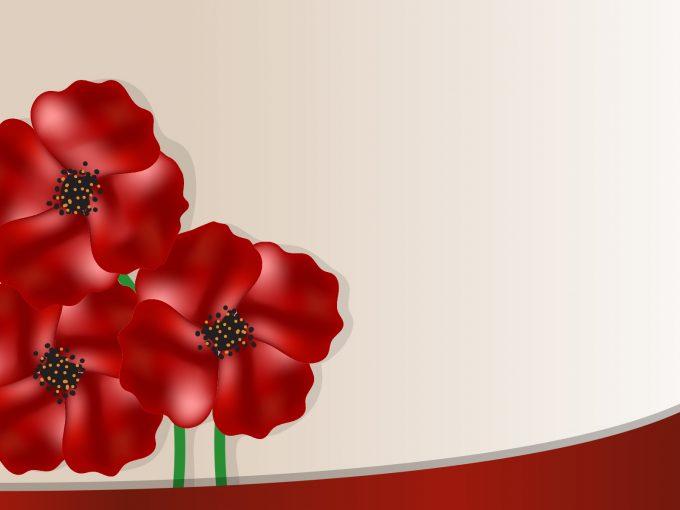 Poppy Flower PPT Backgrounds