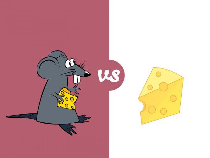Mice and Chees PPT Backgrounds