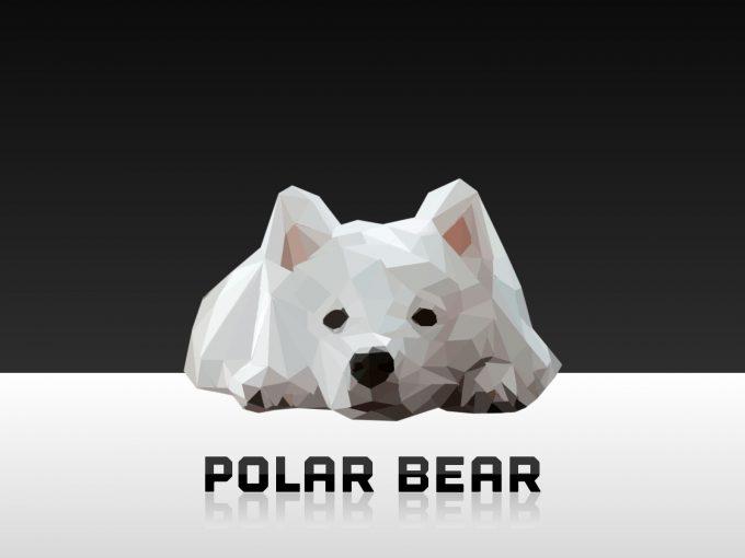 Polar Bear PPT Backgrounds