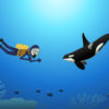 Scuba Diving in the Ocean Powerpoint Backgrounds