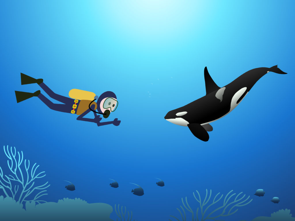 scuba diving in the ocean backgrounds holiday templates free ppt