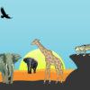 Safari Animals Powerpoint Background