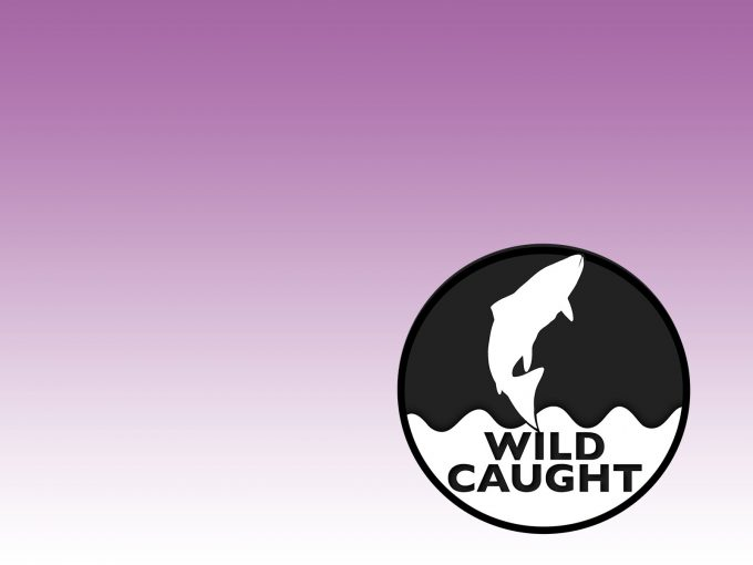 Wild Caught PPT Backgrounds