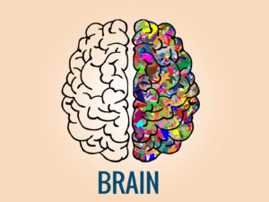 Brain PPT Backgrounds