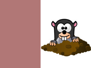 Cute Mole Cartoon Powerpoint Themes