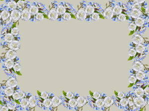 Flowers Rectangular Frame Backgrounds