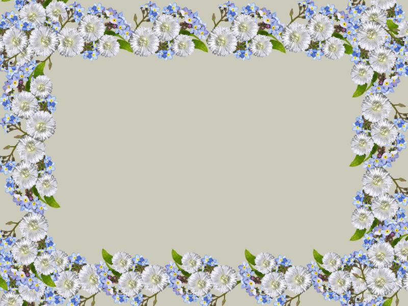 Flowers Rectangular Frame Backgrounds