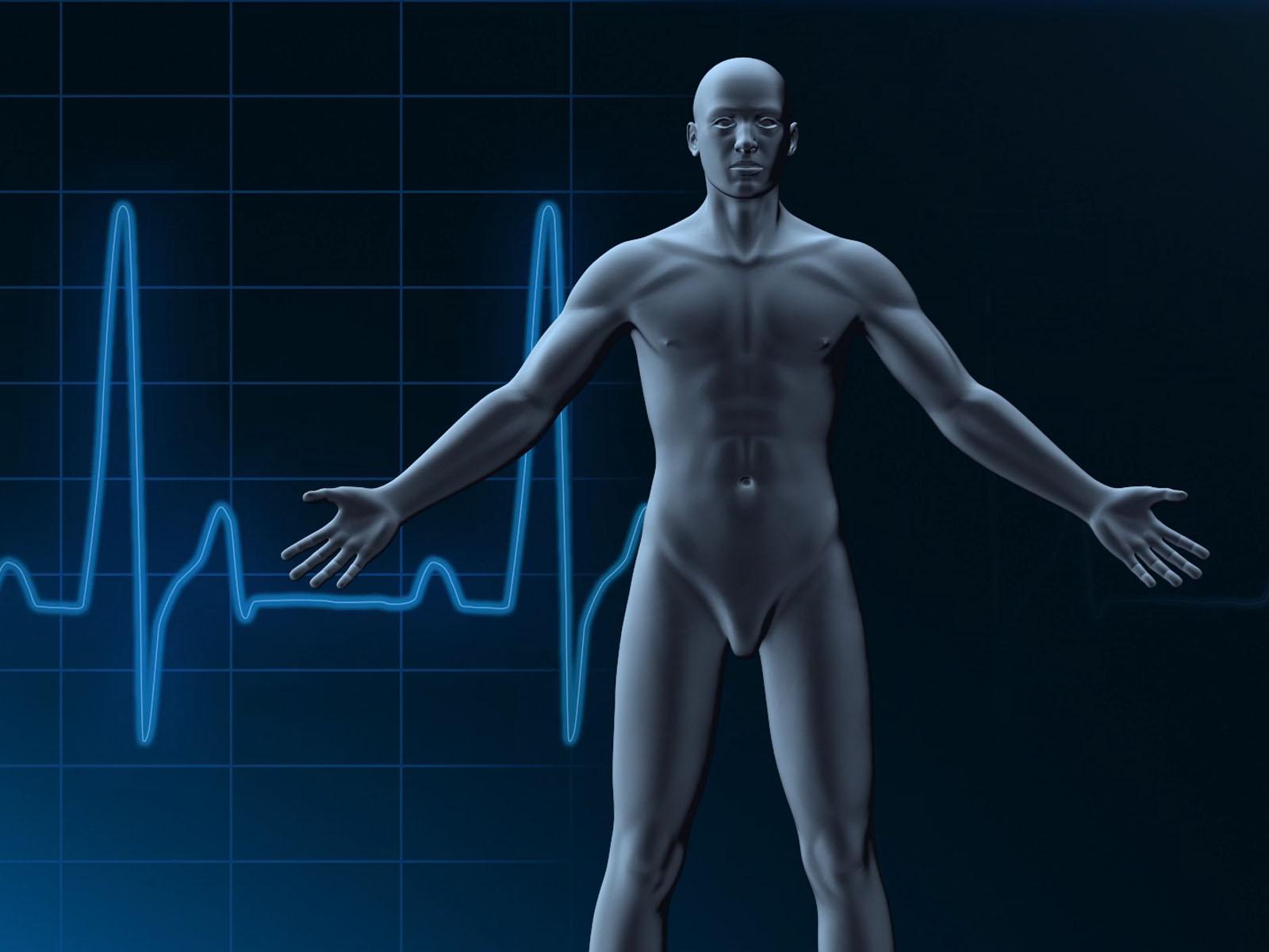 Human Medical Templates