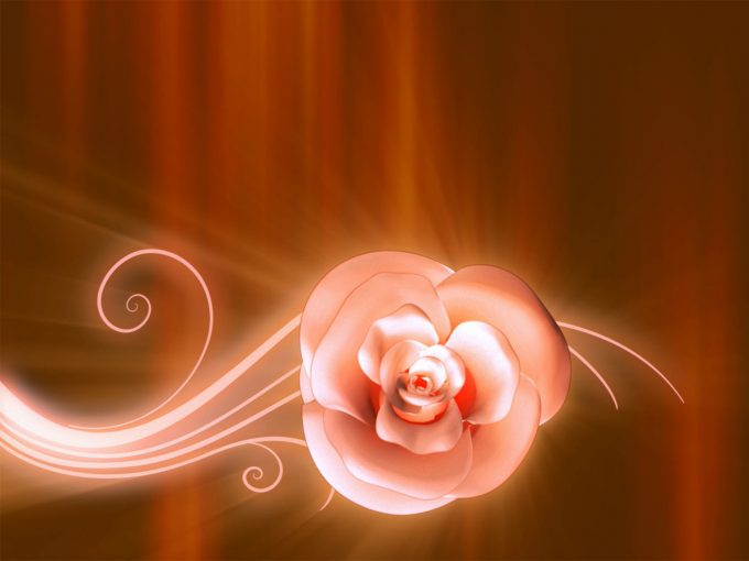 Orange Flowers PPT Backgrounds