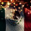 Mexico Flag Light
