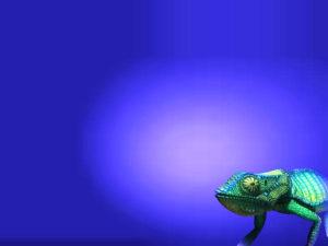 Chameleon Blue PPT Backgrounds