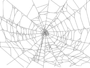 Spider Web Backgrounds