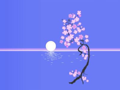 Sunset Flower PPT Template